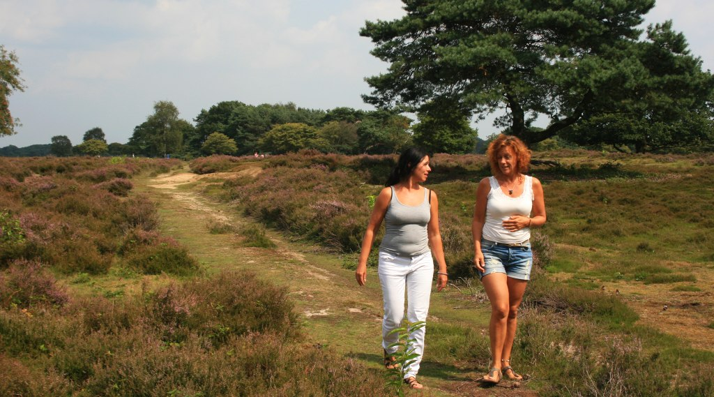 Eilandcoaching dietist Hilversum doet de consulten wandelend.
